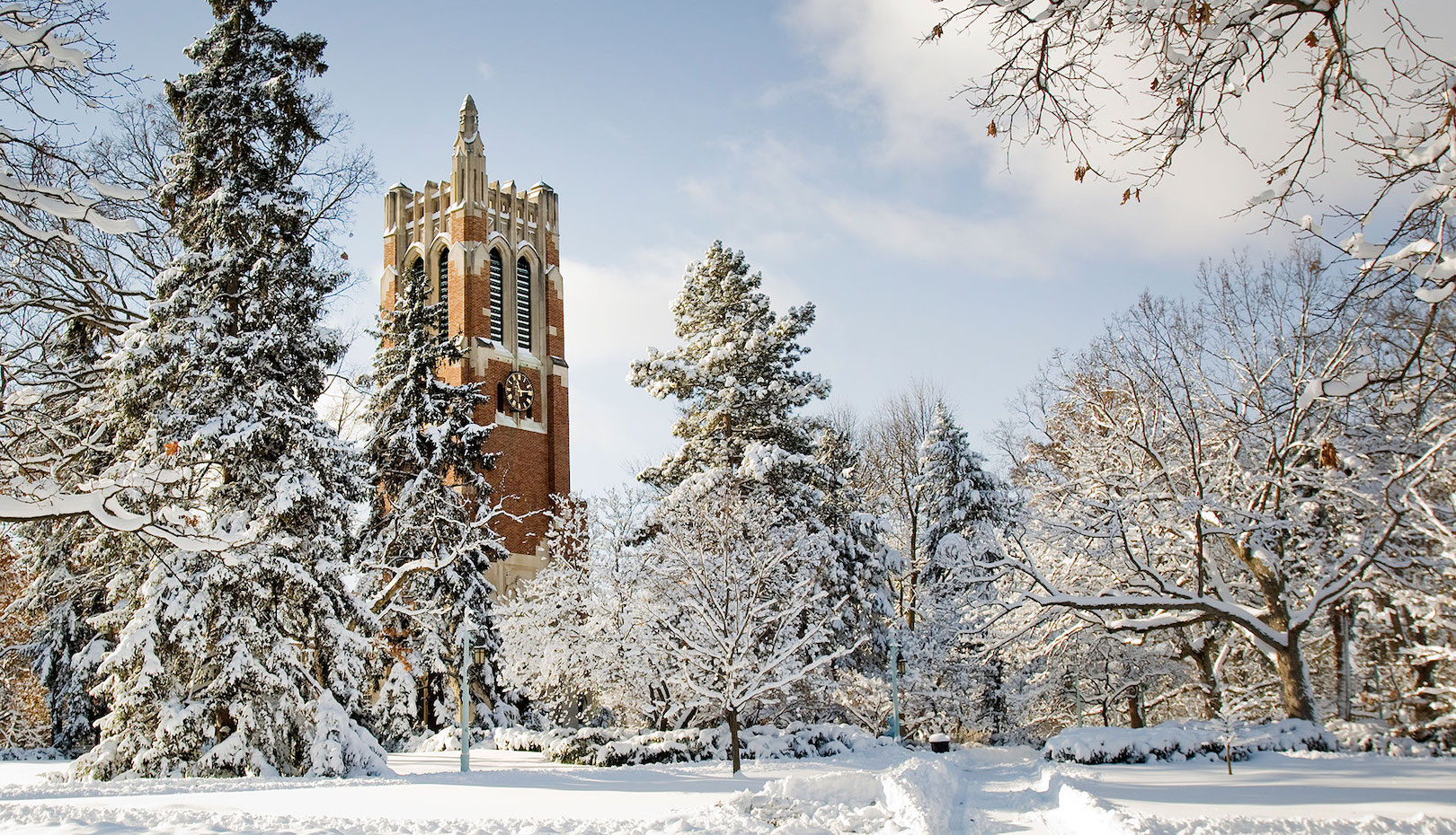MSU campus in winter